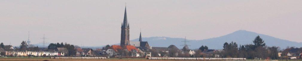FDP Swisttal